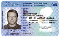 Fail to surrender driver licence